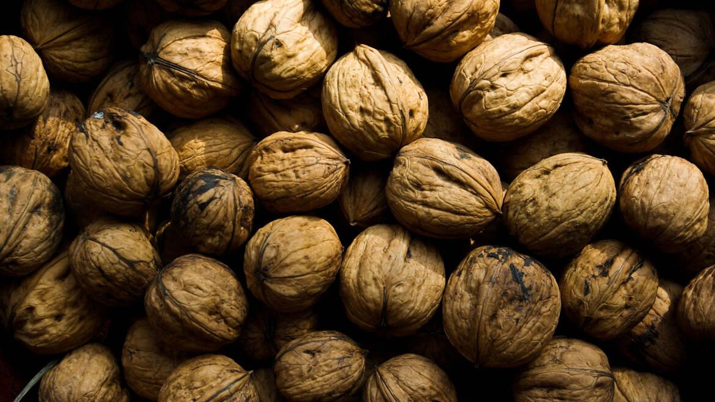 Walnuts – La Noix du Périgord