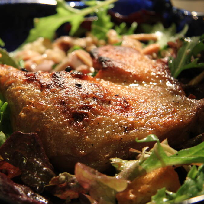 Duck confit and salad